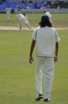 Free Cricket Fielder Stock Photo - 2754200