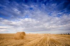 Free Bale In Landscape Royalty Free Stock Photos - 2754378