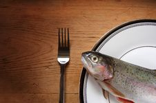 Free Trout Lunch Royalty Free Stock Photography - 2754527