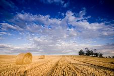 Free Bale In Landscape Royalty Free Stock Image - 2754586