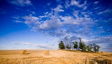 Free Bale In Landscape Royalty Free Stock Image - 2755056