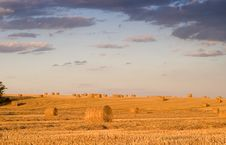 Free Bale In Landscape Stock Photography - 2755352