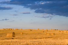 Free Bale In Landscape Stock Photos - 2755403