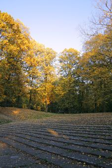 Autumn Park In The Morning Royalty Free Stock Image