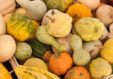 Free Pumpkins Royalty Free Stock Image - 27503536