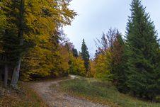 Free Autumn Road Stock Photos - 27503553