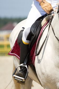 Free Dressage Horse Royalty Free Stock Photography - 27514487