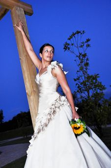 Free Bride At Night Royalty Free Stock Photo - 27514645