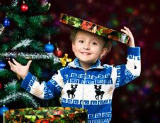 Free Boy On The Background Of The Christmas Tree Royalty Free Stock Photography - 27514897