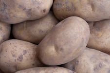 Free Potatos Royalty Free Stock Photos - 27516748