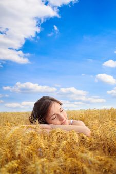 Free Pretty Woman On Yellow Wheat Field Royalty Free Stock Photography - 27524247