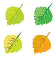 Free Colorful Leaves Stock Photo - 27524530
