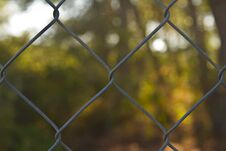 Free Fence Of A House Royalty Free Stock Photography - 27526537
