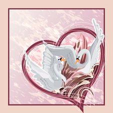 Free Two Swans Postcard Stock Photos - 27534893