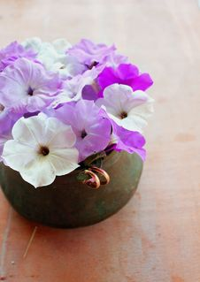 Free Petunias And Wedding Rings Stock Photography - 27538322