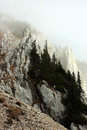 Free Abrupt Cliffs On The Mountain Hiding In Fog Royalty Free Stock Photo - 27545665