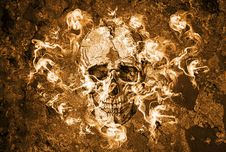 Free Scull Royalty Free Stock Image - 27553756