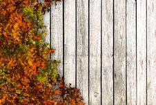 Free Wooden Wall Royalty Free Stock Photos - 27553938
