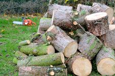 Free Chain Saw And Logs Stock Images - 27555834