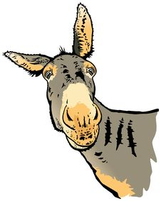 Free Looking Donkey Royalty Free Stock Photos - 27557058