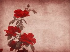 Grunge Roses Royalty Free Stock Photography