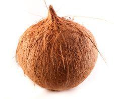 Free Fresh Coconut Isolated Stock Image - 27570721