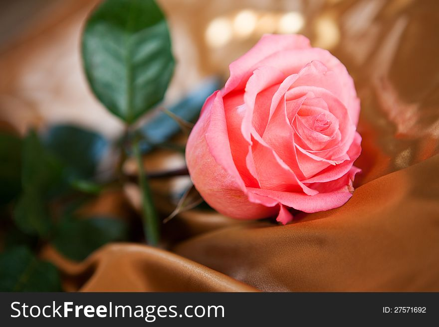 One flower on silk fabric