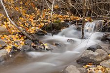 Free Thomas Creek Fall Royalty Free Stock Photo - 27582395