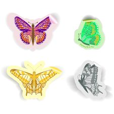 Free Butterfly Stickers Royalty Free Stock Image - 27588476