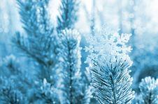 Free Festive Background Royalty Free Stock Image - 27590096