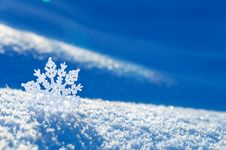 Free Winter Background. Royalty Free Stock Image - 27599886