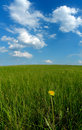 Free Clouds And Solitary Dandelion Stock Images - 2761024