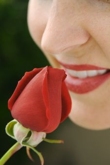 Free Woman Smelling Rose Bud Stock Image - 2763561
