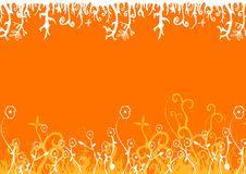 Free Orange Background Stock Images - 2767614