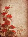 Free Grunge Textured Roses Stock Image - 27606381