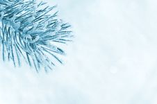 Free Winter Background. Stock Photography - 27603852