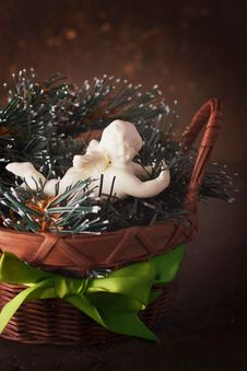 Christmas Decoration With Little Cute Angel Stock Images