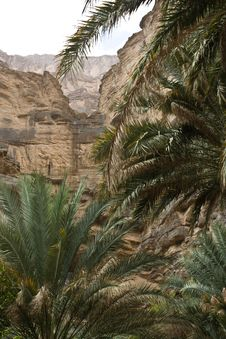 Free View From The Interior Of Wadi An Nakhur, Oman Royalty Free Stock Images - 27604959