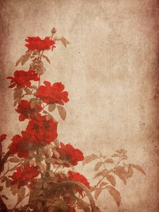 Grunge Textured Roses Stock Image