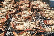 Free Grilled Lobsters Stock Photography - 27609222