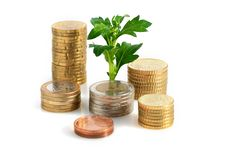 Free Plant And Coins. Royalty Free Stock Photo - 27611085