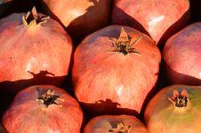 Free Pomegranates Stock Photos - 27611173