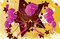 Free Abstract Flowers Background Stock Image - 27618971