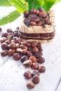 Free Chestnut Royalty Free Stock Photos - 27620318
