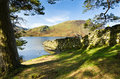 Free Stone Wall Into Crummock Water Royalty Free Stock Photos - 27621998