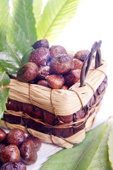 Free Chestnut Stock Image - 27620571