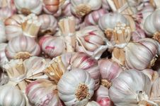 Free Dried Garlic. Royalty Free Stock Photography - 27631347