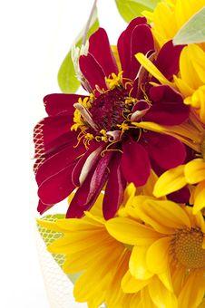 Free Bouquet Of Yellow Chrysanthemum Stock Photos - 27636713