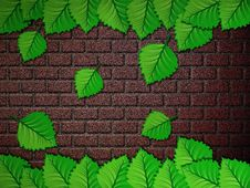 Free Green Leaves And Brick Wall Stock Photo - 27640300