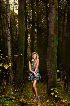 Free Fashion Portrait Of Young Beautiful Woman Stock Photo - 27641900